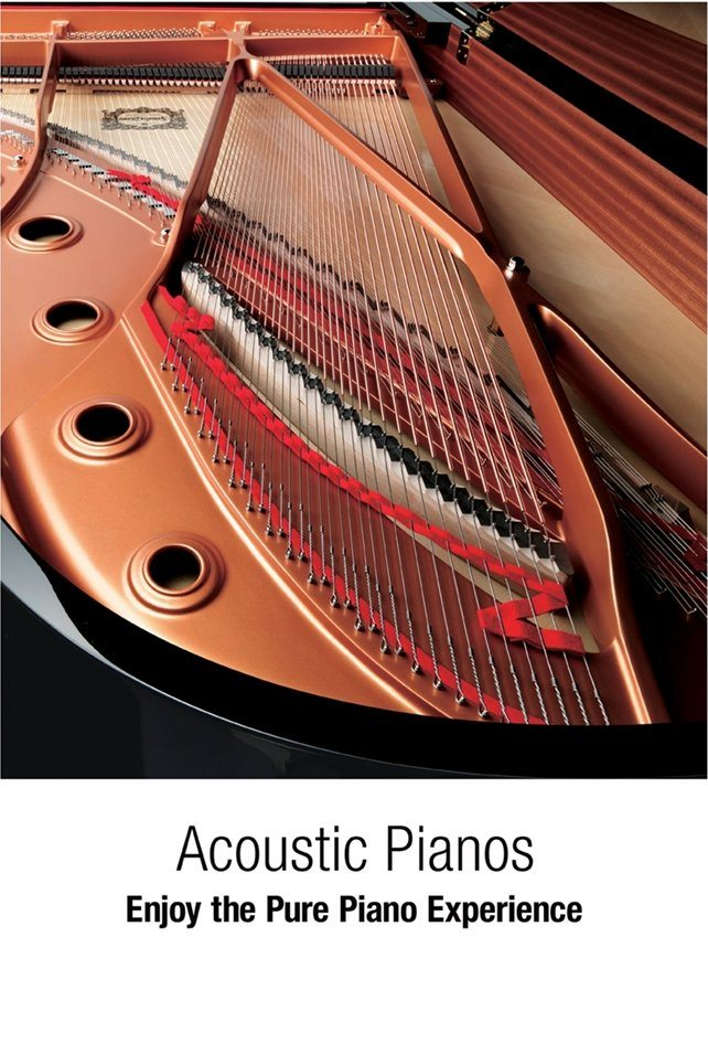Acoustic Pianos - Enjoy the Pure Piano Experience